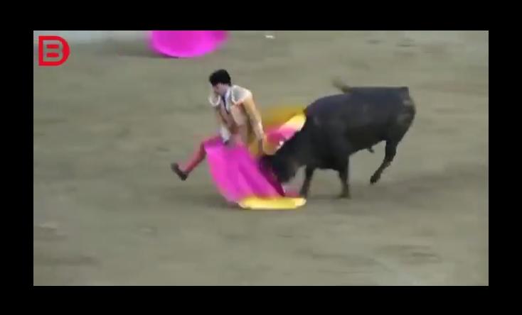 بالفيديو.. لحظة وفاة مصارع ثيران داخل الحلبة