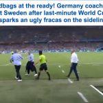 شاهد بالفيديو والصور..اشتباكات عنيفة على مقاعد البدلاء بعد انتهاء مباراة المانيا والسويد!