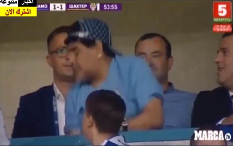 """شاهد.. مارادونا يعود """"رئيسا"""" ويفقد أعصابه في المدرجات"""