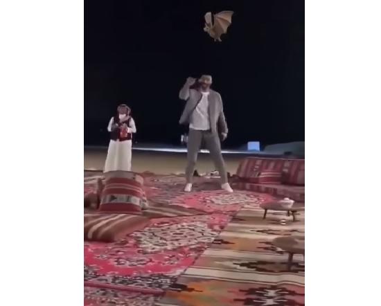 بالفيديو.. لاعب الأهلي للعويس روح ارقى المدرج احسن لك!