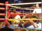 """بالفيديو.. في لقطة نادرة: ملاكمان يُسقطان بعضهما بـ""""القاضية"""" في نفس اللحظة!"""