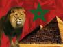 """شاهد.. مصوّرة مغربية تبكي بحرقة بعد خروج """"أسود الأطلس"""" من كأس الأمم الإفريقية"""